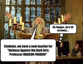 "Students, we have a new teacher for ""Defense Against the Dark Arts:  Professor DRAGON-FODDER!"""