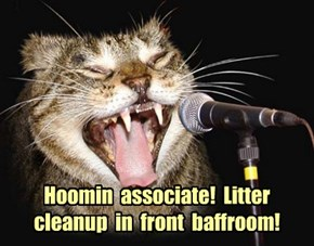 Hoomin  associate!  Litter  cleanup  in  front  baffroom!