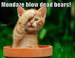 Mondaze blow dead bears!