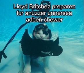 Lloyd Britchez  preparez  fur anuzzer