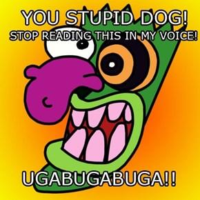 STUPID DOG!