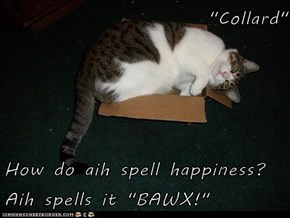 """Collard""  How do aih spell happiness? Aih spells it ""BAWX!"""