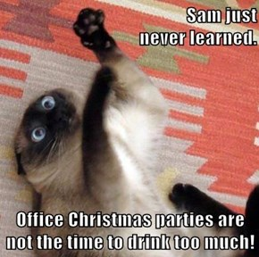 Sam just                                                   never learned.  Office Christmas parties are not the time to drink too much!