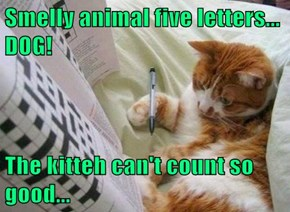 Smelly animal five letters... DOG!  The kitteh can't count so good...