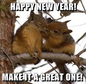 HAPPY NEW YEAR!  MAKE IT A GREAT ONE!
