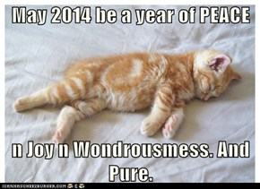 May 2014 be a year of PEACE  n Joy n Wondrousmess. And Pure.
