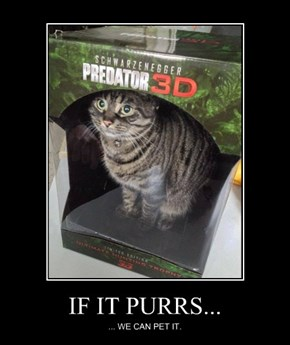 IF IT PURRS...