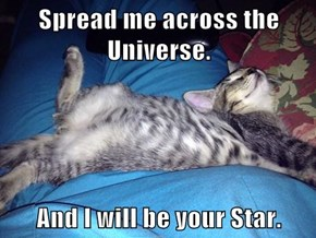Spread me across the Universe.  And I will be your Star.