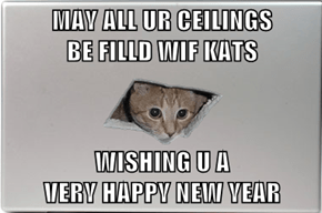 MAY ALL UR CEILINGS                BE FILLD WIF KATS  WISHING U A                           VERY HAPPY NEW YEAR