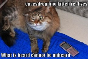 eavesdropping kitteh realizes  What is heard cannot be unheard