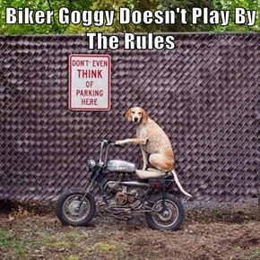 Biker Goggy Doesn't Play By The Rules