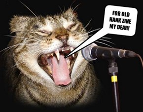 NEW YEARS KARAOKE CAT!