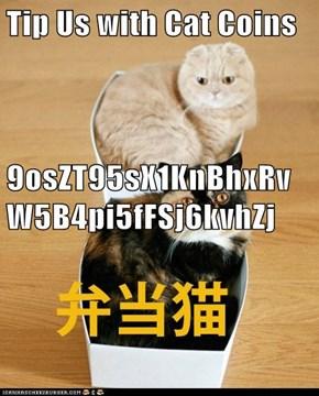 Tip Us with Cat Coins 9osZT95sX1KnBhxRvW5B4pi5fFSj6kvhZj