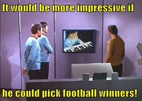 It would be more impressive if  he could pick football winners!