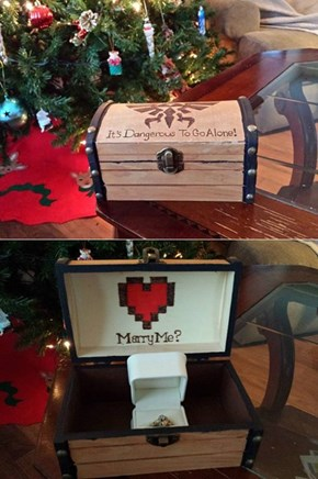 The Ultimate Nerdy Nintendo Proposal