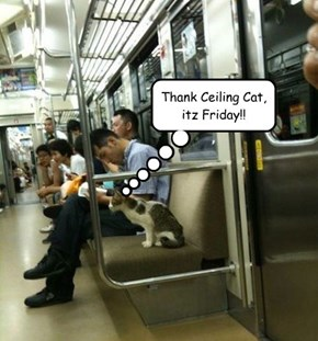 Thank Ceiling Cat, itz Friday!!