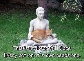 This is my Peaceful Place.  Every cat-on-it's-own needs one.