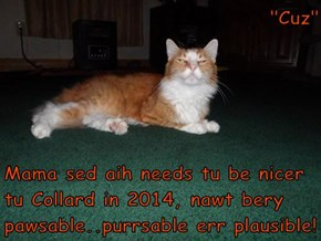 """Cuz""  Mama sed aih needs tu be nicer tu Collard in 2014, nawt bery pawsable..purrsable err plausible!"