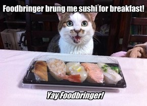 Yes, you can haz sushi, kitteh