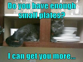 Do you have enough small plates?  I can get you more...