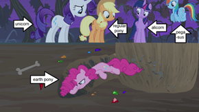 Know You Pony Types