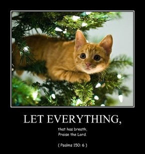 LET EVERYTHING,