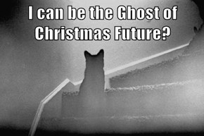 I can be the Ghost of Christmas Future?