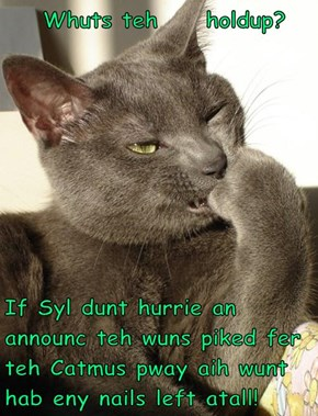 Whuts teh     holdup?   If Syl dunt hurrie an announc teh wuns piked fer teh Catmus pway aih wunt hab eny nails left atall!