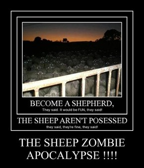 THE SHEEP ZOMBIE APOCALYPSE !!!!