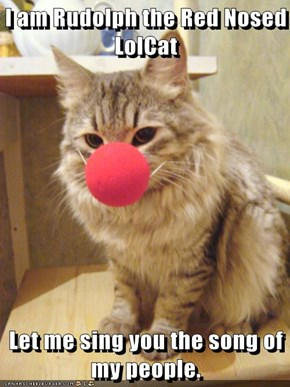 I am Rudolph the Red Nosed LolCat   Let me sing you the song of my people.