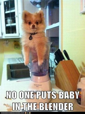 NO ONE PUTS BABY IN THE BLENDER