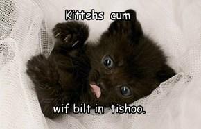 Kittehs  c*m