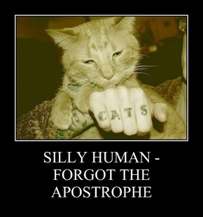 SILLY HUMAN - FORGOT THE APOSTROPHE