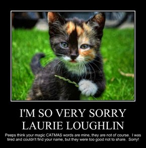 I'M SO VERY SORRY LAURIE LOUGHLIN