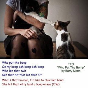 """Who Put The Boop"" (TTO ""Who Put The Bomp"" by Barry Mann)"