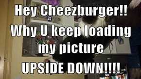 Hey Cheezburger!! Why U keep loading my picture UPSIDE DOWN!!!!