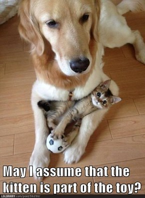May I assume that the kitten is part of the toy?