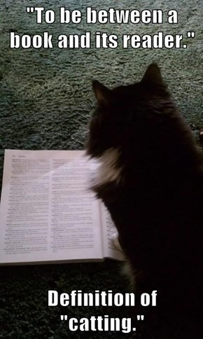 """To be between a book and its reader.""  Definition of ""catting."""