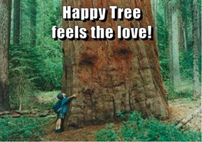 Happy Tree                                 feels the love!