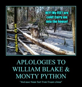 APLOLOGIES TO WILLIAM BLAKE & MONTY PYTHON