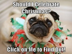 Click on the Pug to See Why He Maybe Shouldn't Celebrate Christmas