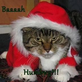Baaaah  Humbug!!!