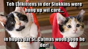Teh Lolkittens in der Stokkins were hung up wif care...  in hopes dat St. Catmas wood soon be der!