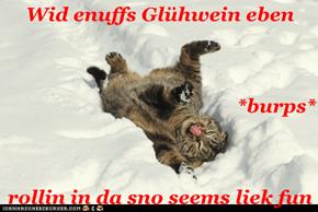 Wid enuffs Glühwein eben *burps* rollin in da sno seems liek fun