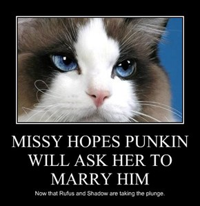 MISSY HOPES PUNKIN WILL ASK HER TO MARRY HIM