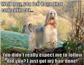 Well now, you fell down that embankment...  You didn't really expect me to follow did you? I just got my hair done!