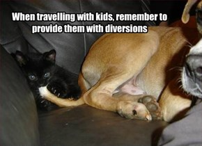 When travelling with kids, remember to provide them with diversions