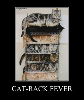 CAT-RACK FEVER