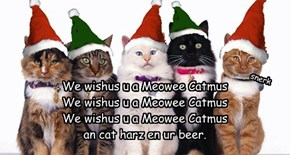 We wishus u a Meowee Catmus We wishus u a Meowee Catmus We wishus u a Meowee Catmus an cat harz en ur beer.