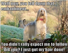 Well now, you fell down that embankment...  You didn't rally expect me to follow did you? I just got my hair done!